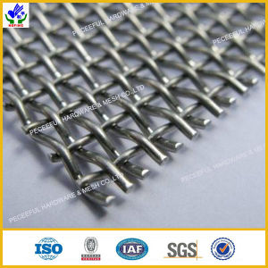 Stainless Steel Square Wire Mesh (HPZS-1023) pictures & photos