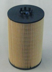 Fuel Filter for Volvo 20998807 pictures & photos