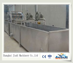 Stainless Steel Vegetable and Fruit Washing Machine pictures & photos