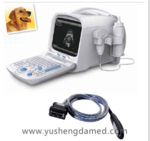 Full Digital Veterinary Portable Ultrasound Scanner Machine Ysd1206-Vet pictures & photos