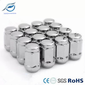 Chrome Wheel Nut Covers / Tyre Nut pictures & photos
