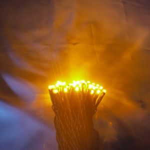 Outdoor Decoration Copper LED String Lights pictures & photos