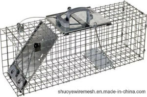 Human Live Capture Trap Cage From China Factory pictures & photos