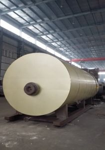 Oil Condensing Bearing Hot Water Boiler Wns5.6 pictures & photos