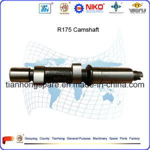 R175 Camshaft pictures & photos
