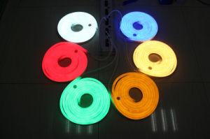 AC230V/AC120V/DC12V/24V IP65 LED Neon Flex Strip Light pictures & photos