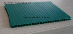 8′*4′ Construction and Building Plastic Protection Board pictures & photos