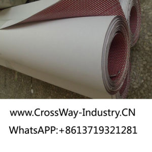 Roll One Way Vision for Outdoor Eco Solvent Printing Materials