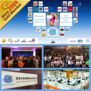 Consolidation/Buyer Agency/Customs Broker/Shipping Agent From China to Wordwide pictures & photos