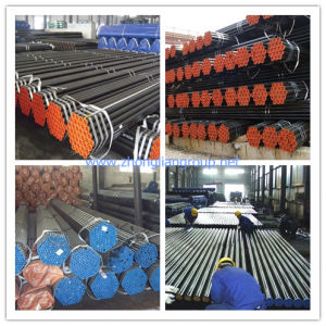 Quality Steel Seamless Pipe (ZL-SP) pictures & photos