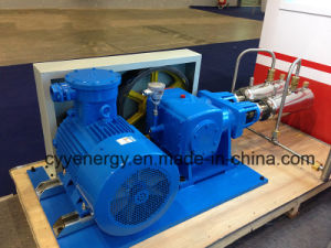 Cyyp 73 Uninterrupted Service Large Flow and High Pressure LNG Liquid Oxygen Nitrogen Argon Multiseriate Piston Pump pictures & photos