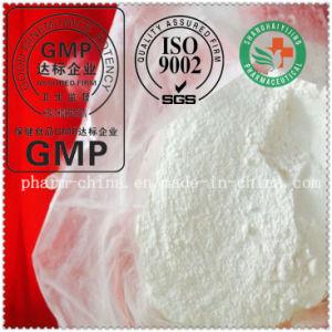 Local Anesthesia Powder Pramoxine Hydrochloride / Pramoxine (637-58-1) Local Anesthetic Powder pictures & photos