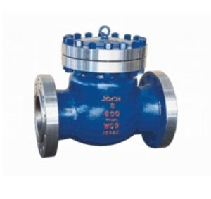 Cast Steel Control API Swing Check Valve pictures & photos