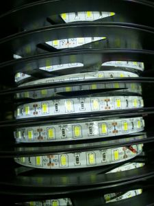 2018 Factory Production LED Strip Light, Programmable RGB LED Strip, Addressable RGB LED Strip pictures & photos