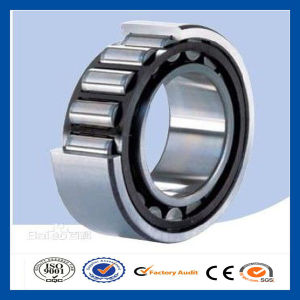 Full Complement Loader Parts Single Row Cylindrical Roller Bearing N241e