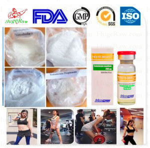 High Quality Anabolic Steroid Powder Testosterone Enanthate for Bodybuilding pictures & photos