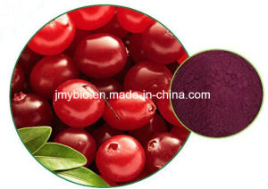 Cranberry Extract Vaccinum Macrocarpon Anthocyanidins 1-25% Proanthocyanidins 1%-70% pictures & photos
