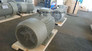 Y2 Iron Casting Three Phase Electric Motor -Standard Motor pictures & photos