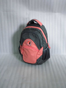 Men/Boys/Students Shoulder Backpack Bag for Travel/Shopping/School pictures & photos