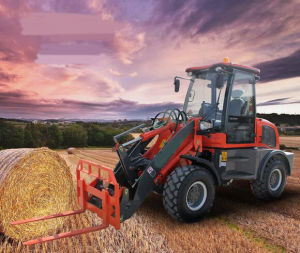 Good Design Wheel Loader with Bucket pictures & photos