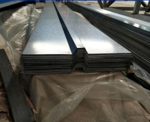 Galvanized Steel Coil/Sheet pictures & photos