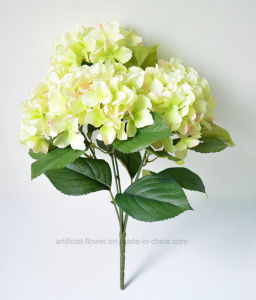 Artificial Hydrangea Flower for Wedding Decoration pictures & photos