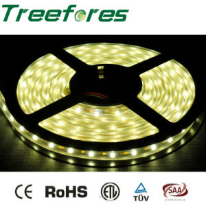 Treefores 60LED LED Strip Light IP65 Outdoor Lighting pictures & photos