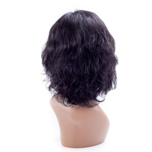 Full Lace Synthetic Hair Wigs for Women pictures & photos