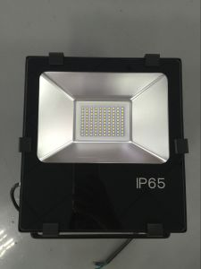 IP65 50W LED Flood Canopy Ceiling Tunnel Light (QH-FLXH-50W) pictures & photos