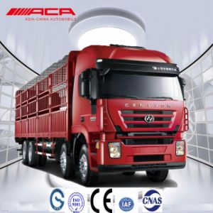 Saic-Iveco Hongyan 8X4 Overload 380HP Cargo Lorry/Van Truck pictures & photos
