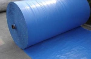 Wear-Resistance PVC Coated Tarpaulin for Truck Cover/Tent pictures & photos
