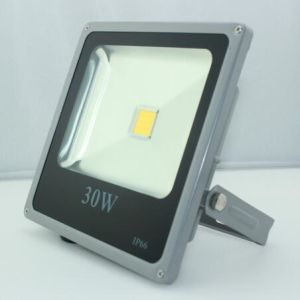 Home Garden LED Flood Light Lamp 30W pictures & photos