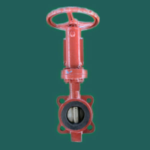 Marine Accessories Stainless Steel Butterfly Valve pictures & photos