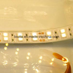 Double Row 5050 Silicone Tube Flexible LED Strip pictures & photos