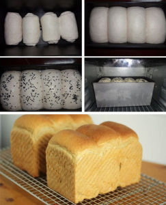 Baking Oven Bread Toast Cake Roaster for Bakery pictures & photos