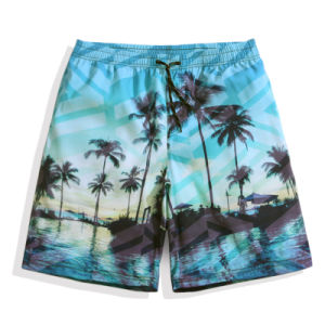 2017 Fashion Men Swim Shorts Beachwear Swimming Trunk pictures & photos