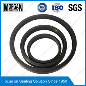 as Type FKM/PTFE/NBR Rotary Ring Skeleton Oil Sealing pictures & photos