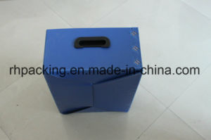 Four Open Box/Recyclable Polypropylene Corflute Fruit Box Folding Box with Clasp Hands pictures & photos