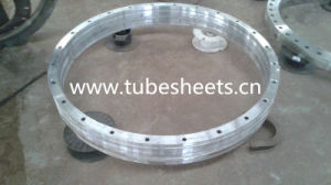 Large Size Forging Flange pictures & photos