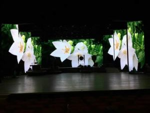 P4.8mm Indoor/Outdoor LED Video Panel for Stage Show pictures & photos