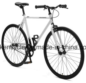 700c Hot Sale Cheap Single Speed Fixed Gear Bike Bicycles Sy-Fx70011 pictures & photos