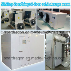 Sliding Door Hinged Door Cold Storage Room pictures & photos