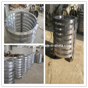 1045 Carbon Steel Forged Valve Flange PP Coating pictures & photos