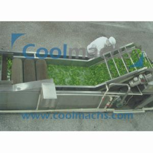Air Bubble Washing Machine for Vegetable and Fruit/Bubble Washer pictures & photos