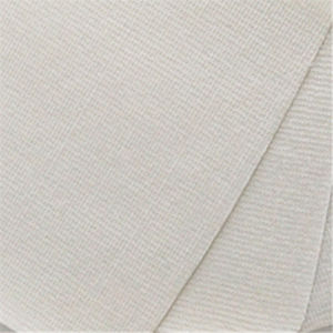 Digital Printing White Stitch Bonded Non Woven Fabric for Shopping Bags Material