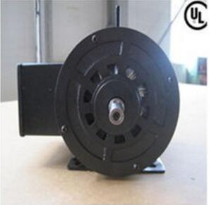 Single-Phase Induction Motor for Segway pictures & photos