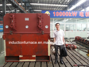 China Tops Squirrel Cage Three Phase Electric Motor pictures & photos