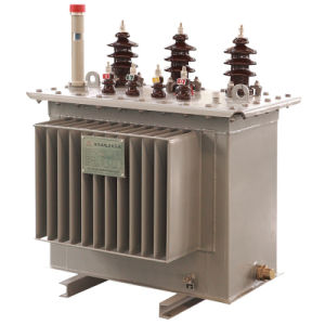 Oil Immersed Transformer pictures & photos