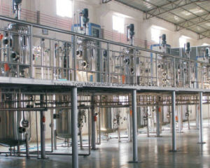 Tonx Stainless Steel Fermentation System pictures & photos