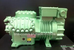6he-28y 28HP Bitzer Compressor (old model 6H-25.2Y) pictures & photos